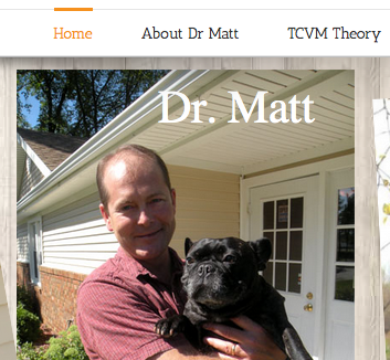 Integrative Veterinary Services